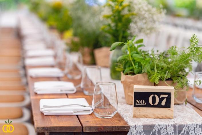 חתונה כפרית בטבע בכרם
